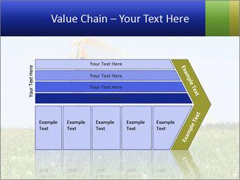 0000082359 PowerPoint Templates - Slide 27