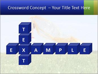 0000082359 PowerPoint Templates - Slide 82