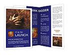 0000082370 Brochure Templates