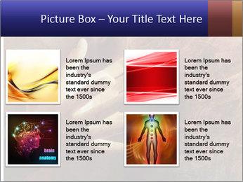 0000082370 PowerPoint Templates - Slide 14