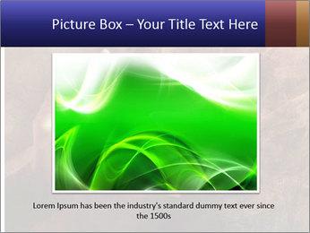 0000082370 PowerPoint Templates - Slide 15