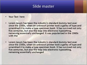 0000082370 PowerPoint Templates - Slide 2