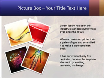 0000082370 PowerPoint Templates - Slide 23