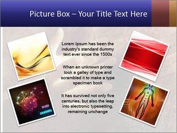 0000082370 PowerPoint Template - Slide 24