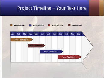 0000082370 PowerPoint Template - Slide 25