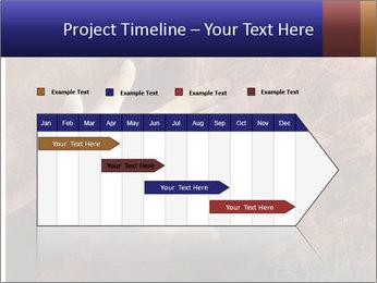 0000082370 PowerPoint Templates - Slide 25