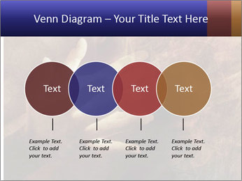 0000082370 PowerPoint Templates - Slide 32