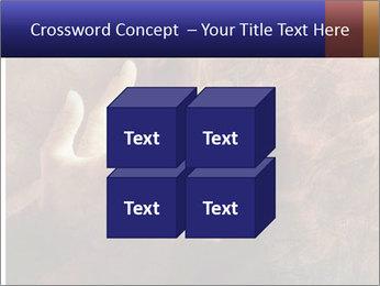 0000082370 PowerPoint Templates - Slide 39