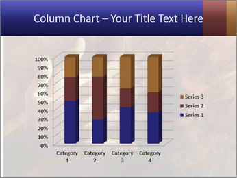 0000082370 PowerPoint Templates - Slide 50