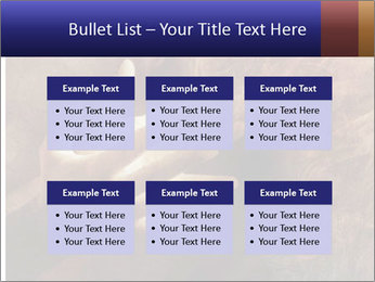 0000082370 PowerPoint Templates - Slide 56