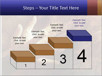 0000082370 PowerPoint Templates - Slide 64