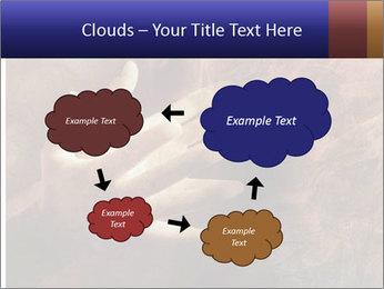 0000082370 PowerPoint Templates - Slide 72