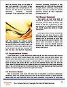 0000082370 Word Template - Page 4