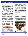 0000082375 Word Templates - Page 3