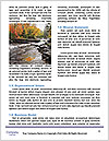 0000082376 Word Template - Page 4
