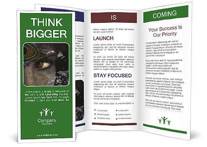 0000082377 Brochure Template