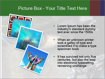 0000082377 PowerPoint Templates - Slide 17
