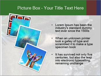 0000082377 PowerPoint Template - Slide 17