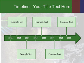 0000082377 PowerPoint Templates - Slide 28
