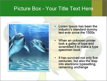 0000082378 PowerPoint Templates - Slide 13