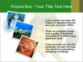 0000082378 PowerPoint Templates - Slide 17