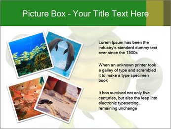 0000082378 PowerPoint Templates - Slide 23