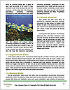 0000082378 Word Templates - Page 4