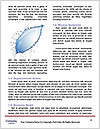 0000082379 Word Templates - Page 4