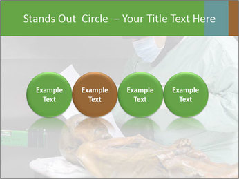 0000082381 PowerPoint Template - Slide 76