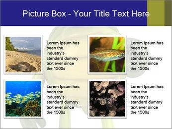 0000082384 PowerPoint Template - Slide 14