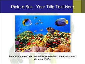 0000082384 PowerPoint Template - Slide 15