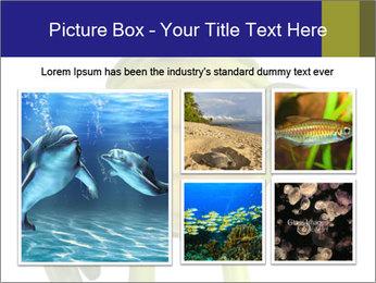 0000082384 PowerPoint Template - Slide 19