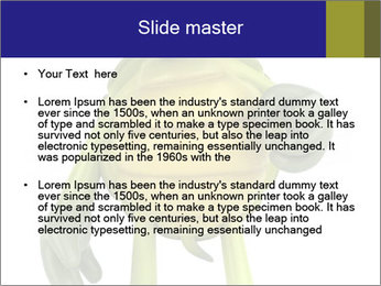 0000082384 PowerPoint Template - Slide 2