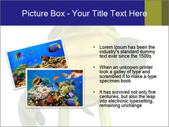 0000082384 PowerPoint Template - Slide 20