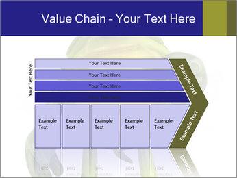0000082384 PowerPoint Template - Slide 27