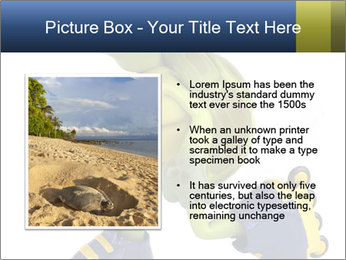 0000082386 PowerPoint Template - Slide 13