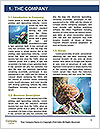 0000082386 Word Template - Page 3