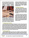 0000082386 Word Template - Page 4