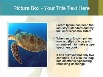 0000082387 PowerPoint Template - Slide 13