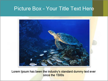 0000082387 PowerPoint Template - Slide 16