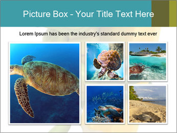 0000082387 PowerPoint Template - Slide 19