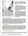 0000082388 Word Template - Page 4