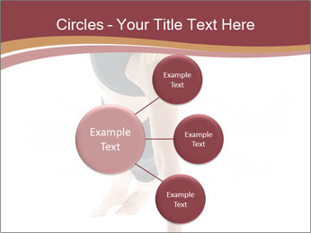 0000082390 PowerPoint Templates - Slide 79