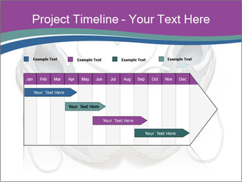 0000082392 PowerPoint Template - Slide 25