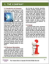 0000082398 Word Template - Page 3