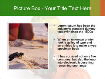 0000082399 PowerPoint Template - Slide 13