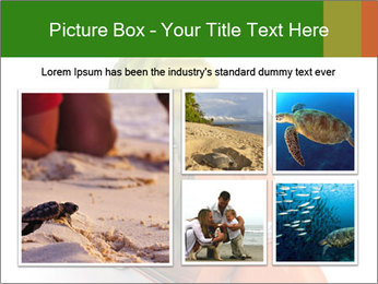 0000082399 PowerPoint Template - Slide 19