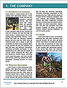 0000082400 Word Template - Page 3