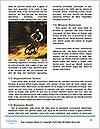 0000082400 Word Template - Page 4