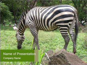 0000082404 PowerPoint Template - Slide 1